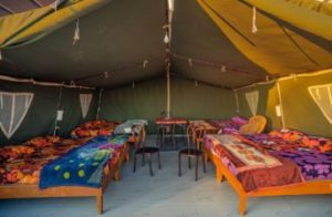 Cmaping Tents